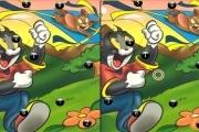 Tom en Jerry Verschillen
